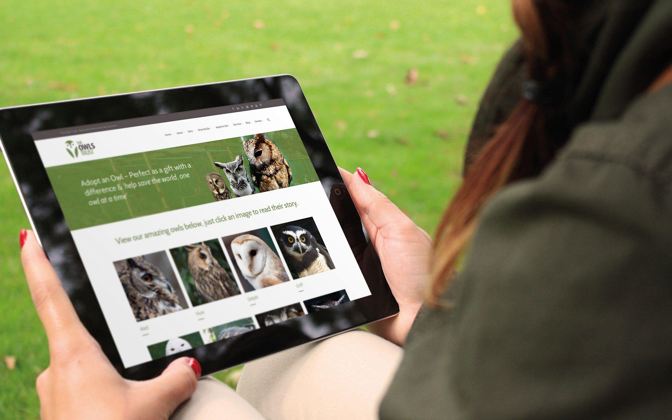 Responsive website - The Owls Trust